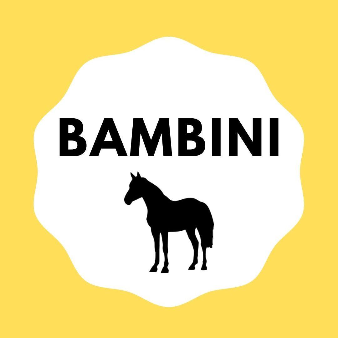 DAS Reitlernsystem - BAMBINI