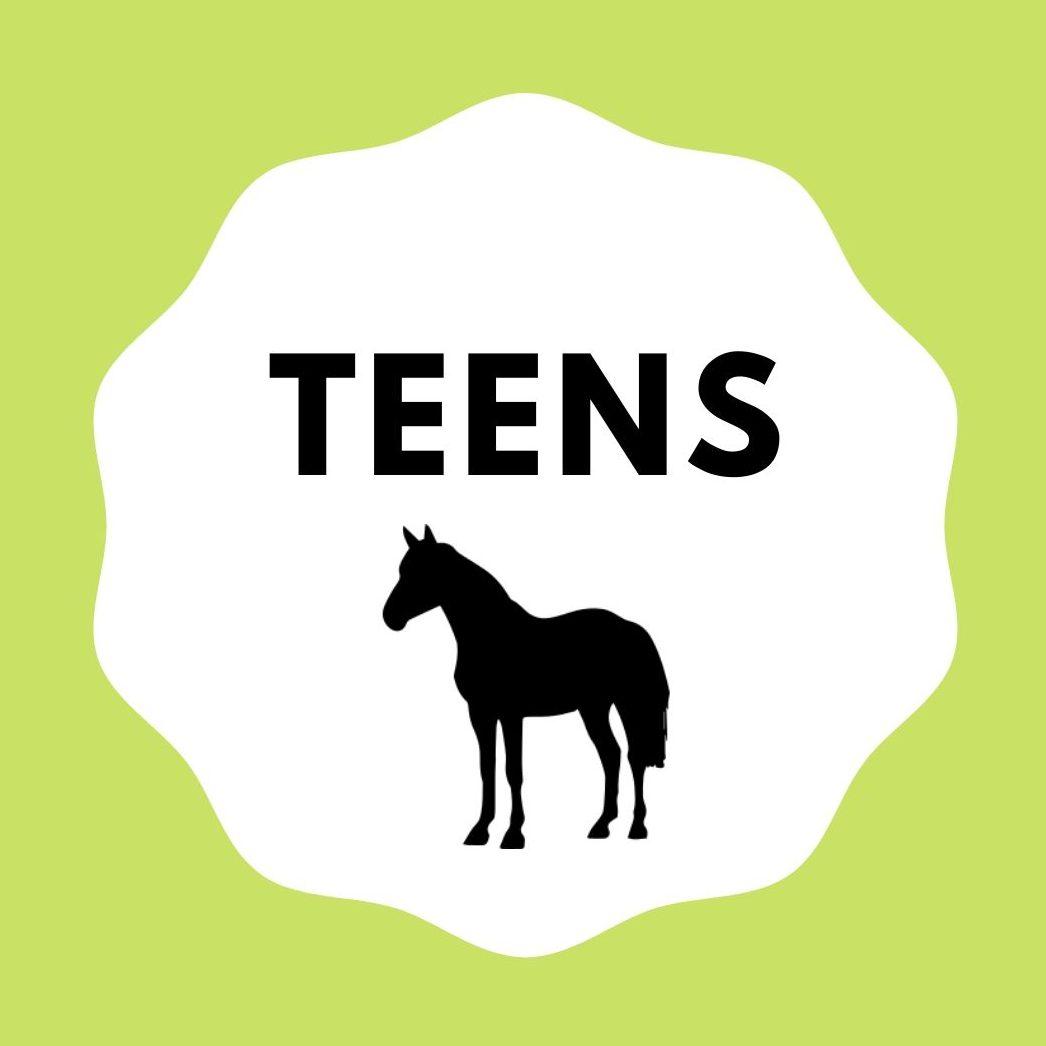 DAS Reitlernsystem - TEENS
